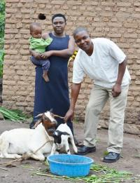 animal exchange family resized